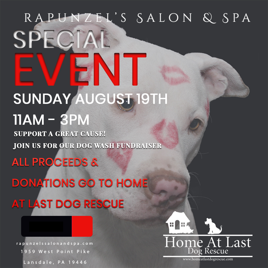 Home at last dog rescue special events solutioingenieria Images